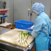 039 (2)野菜